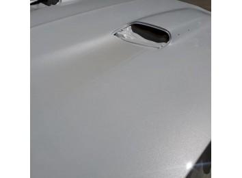Перламутровая краска Noxton для водной среды с белым переливом